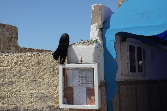 275 - Essaouira
