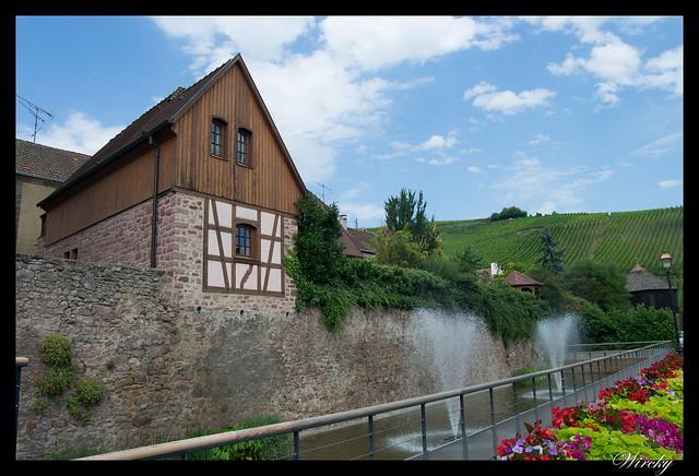 Alsacia Colmar Riquewihr Haut-Koenigsbourg Santa Odilia Estrasburgo - Fuente en río Sambach y viñedos