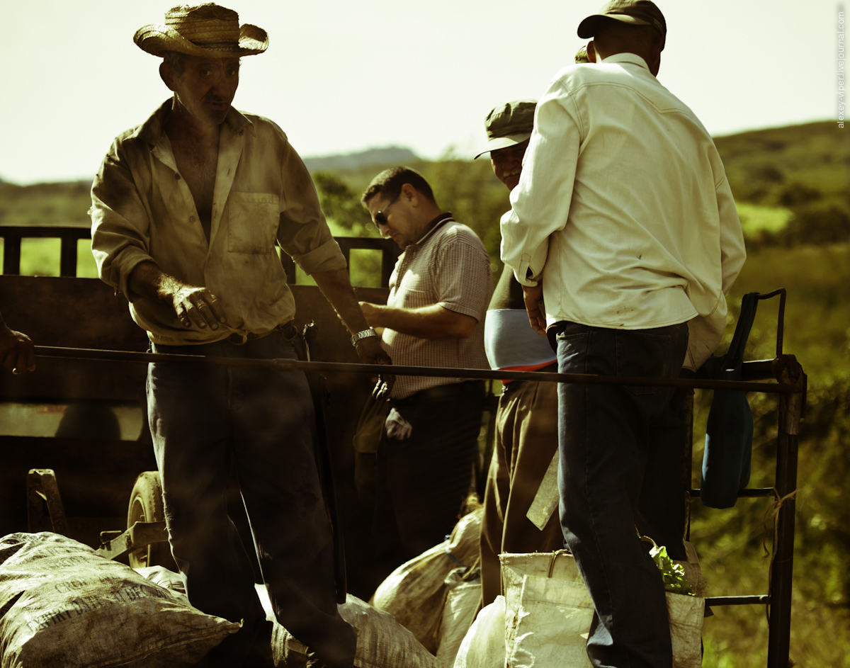 2012.01.12-2012.01.26_dive_safari_[cuba]-travel-028