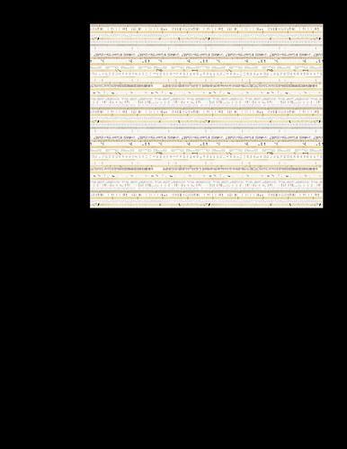 5_PNG_cut_paper_strips_EPHEMERA_A2_350dpi_melstampz