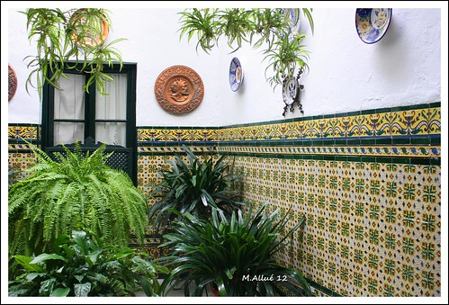 Patio Andaluz by Miguel Allué Aguilar