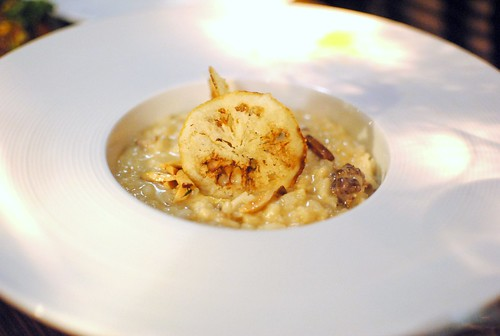 Hashweh Risotto lamb, burnt onion, lemon