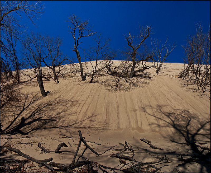 Encroaching Sands