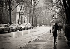 Slick With Promise -Rain - Greenwich Village - New York City