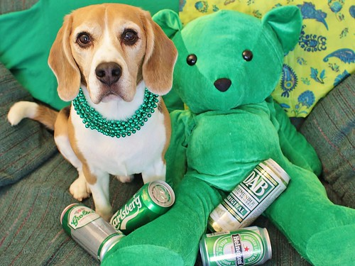 Happy St. Patty's Day!