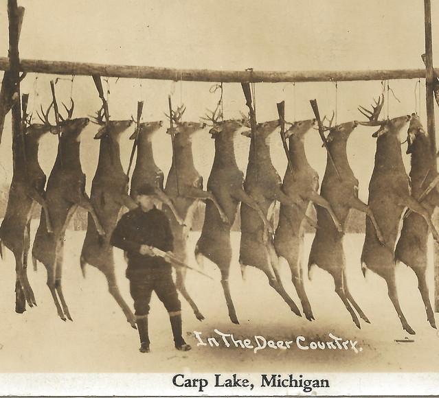 Carp Lake Mi To Myrtle Beach Sc