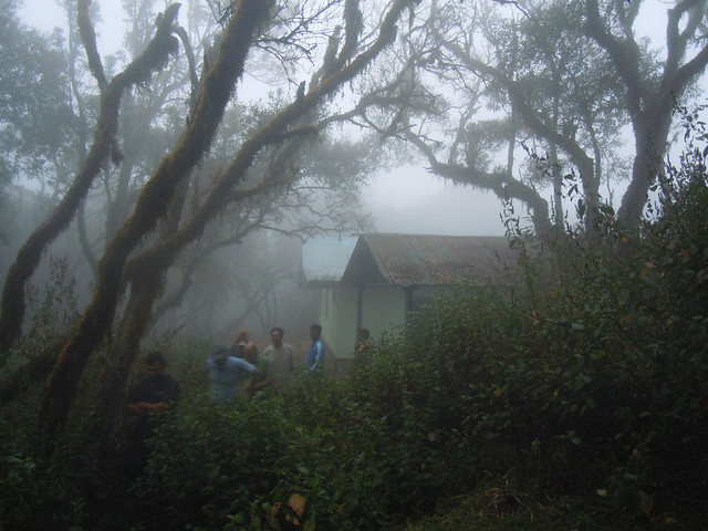 Brahmagiri_Trek_Forest_Rest_House_Heading_Out_To_Brahmagiri_peak