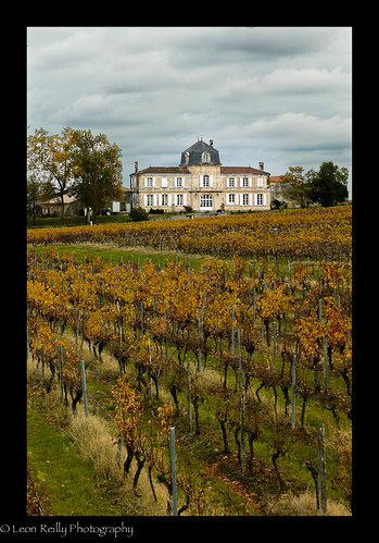 Chateau Gigault in Autumn, Blaye, Bordeaux.