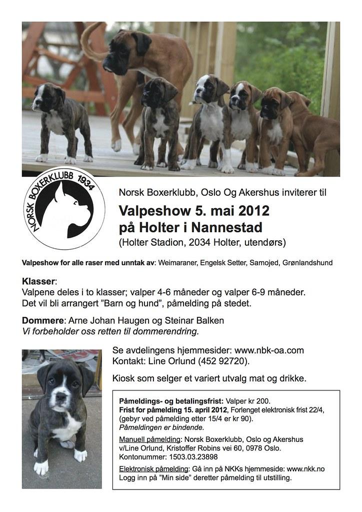 Valpeshow 5.mai 2012, på Holter i Nannestad 6896338066_edd2c139bb_b