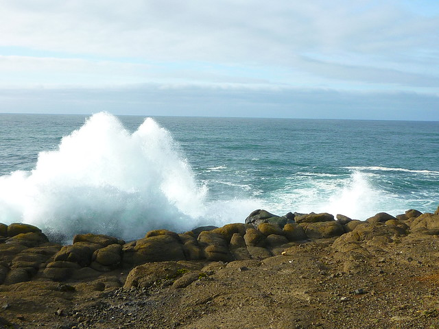waves at whale cove