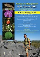 mostra foto Nicola Messina Pisa Limonaia