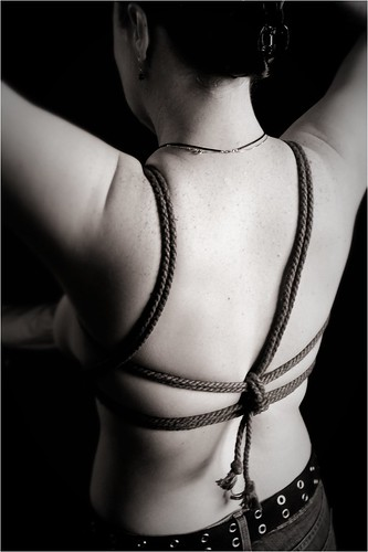 Simple chest harness