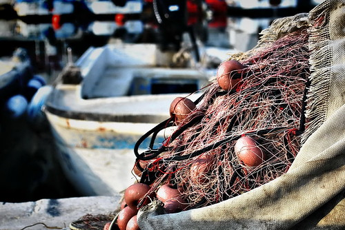 fishing net /explore /