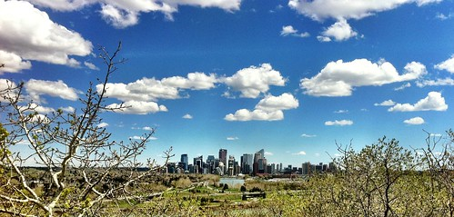 Calgary skyline from spruce cliffs