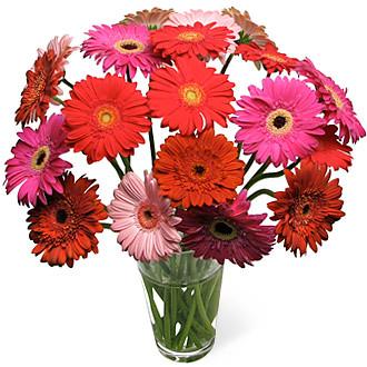 ดอกไม้ ประจำวันเกิด