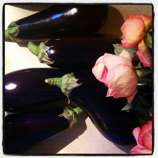 a flock of aubergines