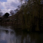 Burslem Park March 2012