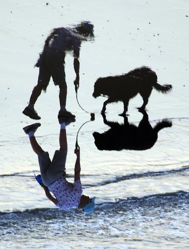 morning shadow dog beach lady wave poole
