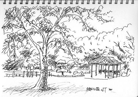 夏の戸越公園