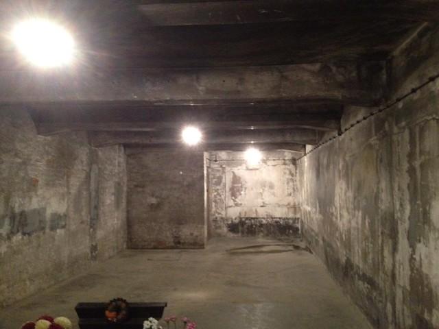 Devoir de m moire chambre gaz au camp d 39 extermination for Auschwitz chambre a gaz