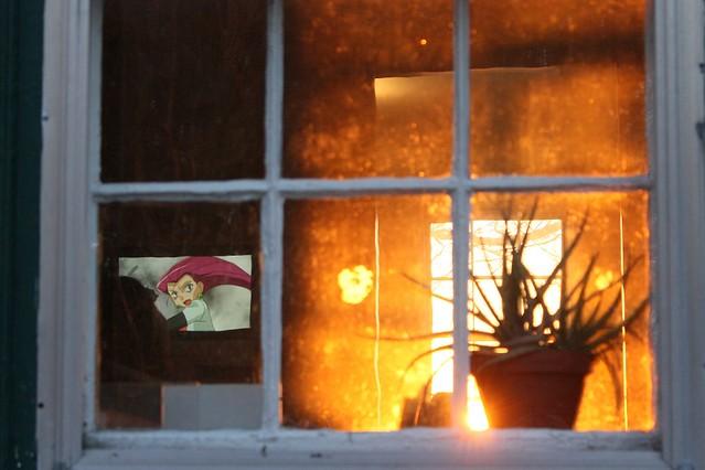 Jessie and the aloe vera fire - a Pokemon adventure
