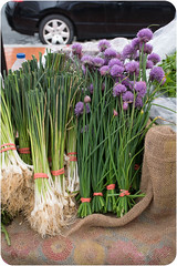 Chives at the Market