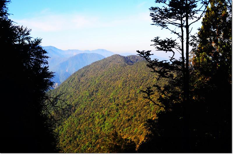 大鹿林道西線遠眺佳仁山