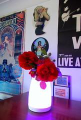 bluetooth lamp vase combo