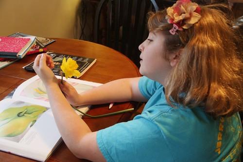 flower study georgia okeeffe