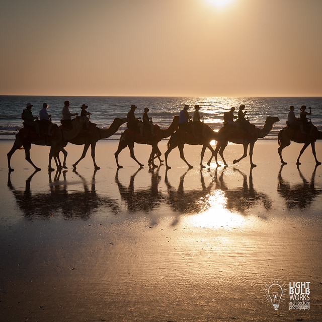 Broome | Cable Beach | Camel Ride 2