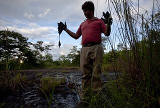 Oil in the Amazon 02