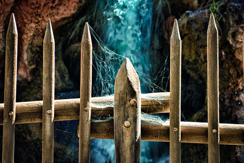 fence waterfall nikon disneyland spiderweb disney d200 hdr ick bigthundermountain frontierland hff bigthunderrailroad fencefriday hbmike2000