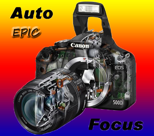 Level 8 Auto Focus