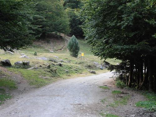 moundeilhs -septembre 2011 004