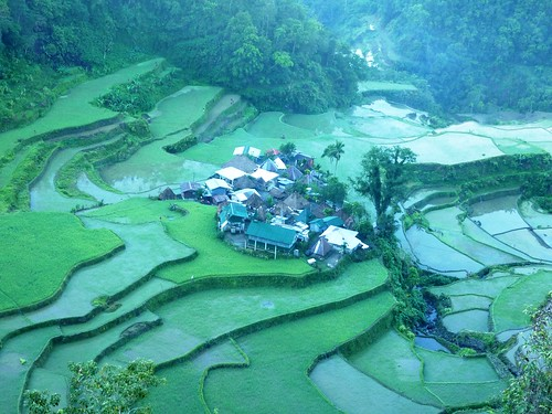 Luzon-Bangaan (130)