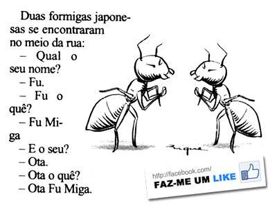 entre duas formigas japonesas - humor