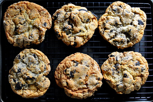 Salted Cookies and Cream Cookies