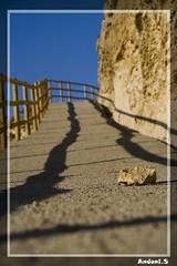 Una piedra en el camino...