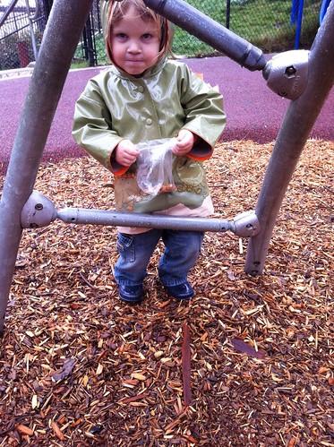 Rainy day at the park
