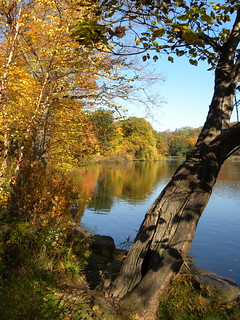 Autumn on Van Cortlandt Lake