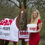 Gain Horse Feeds Irish St. Leger sponsorship launch – featuring Vintage Crop