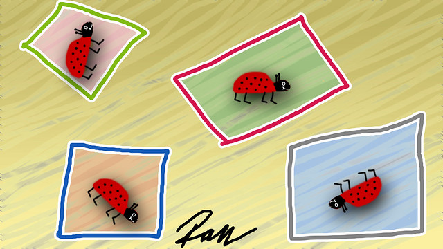 Käfer / bugs - #7