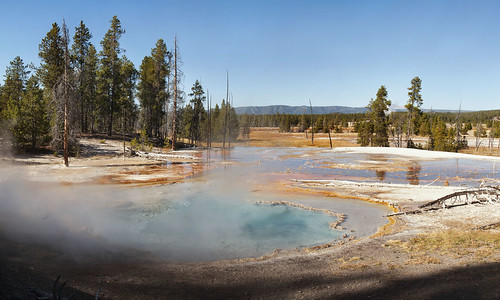 Hot Pools, Yellowstone, 2011