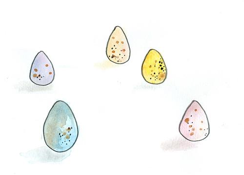 egggggs
