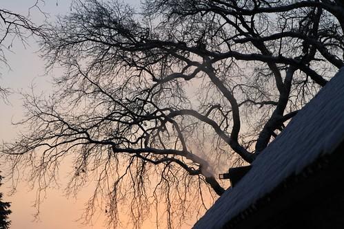 winter nederland 2012 sunsetsunrise gestel gcddphotoproject golfclubdedommel