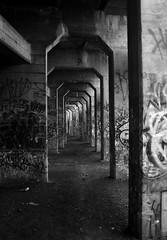 Abandoned Coal Pier 4