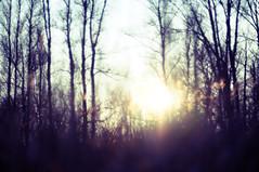 Impressionistic, Atmospheric