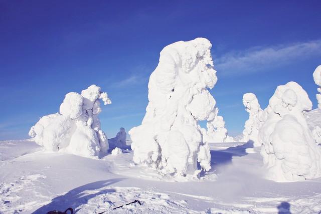 Talvi Keimiö 4