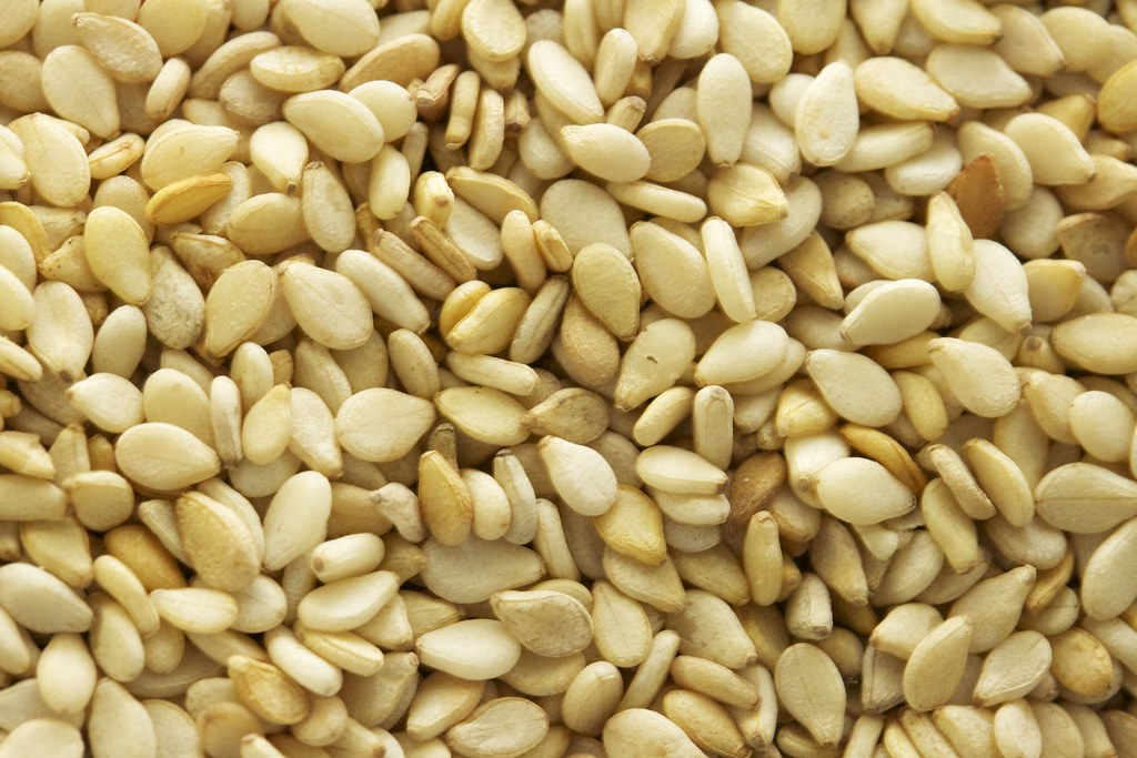sesame seeds kernels, dried (decorticated)