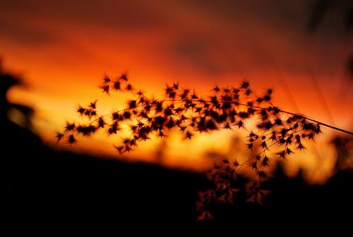 Sunset 22042012